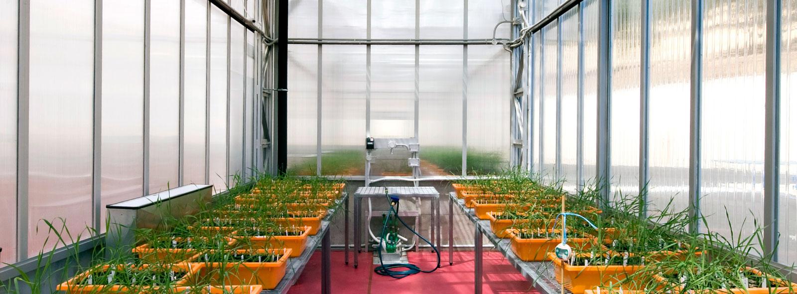 H2o-Architects-Melbourne-University-of-Adelaide-Plant-Accelerator-02